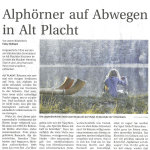 Alphörner auf Abwegen - Templiner Zeitung vom 17.10.12